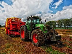 Farmáři v Plzeňském kraji se staví rozdílně ke zmenšování lánů