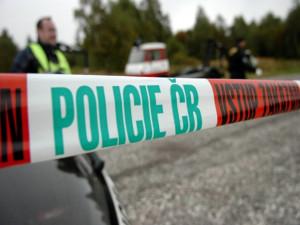 Brutální ubodání důchodce v Plzni potrestal soud 22 lety vězení