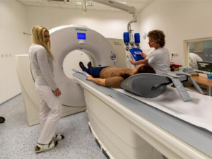 Vědci z Plzně mají tomograf k výzkumu transplantace jater prasat
