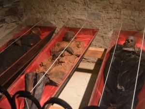 Klatovské katakomby s mumiemi měly loni rekordní návštěvnost