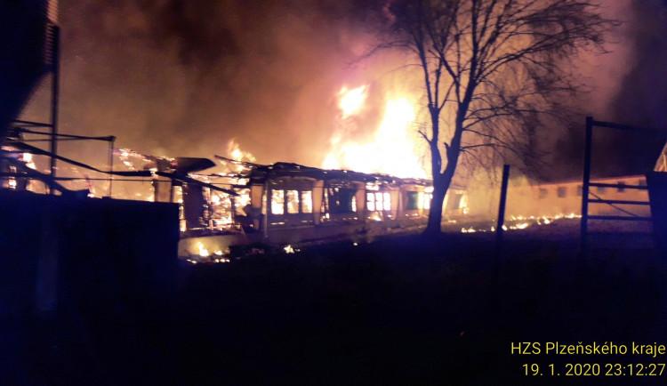 Při požáru vepřína na Rokycansku uhořelo 300 prasnic a 1300 selat