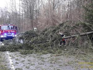 Hasiči v Plzeňském kraji vyjížděli kvůli větru ke 110 událostem