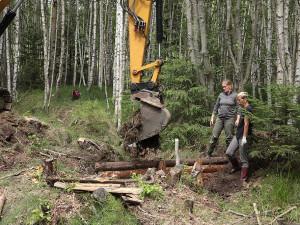 Nový šumavský projekt navrátí vodu do vysušených mokřadů a pramenišť