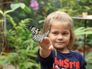 TIPY NA VÍKEND: Rozloučení s prázdninami v zoo nebo výstava medvídků