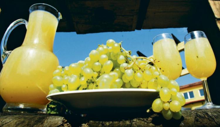 Burčáková sezona je v plném proudu. Víte, jak poznat kvalitní nápoj?