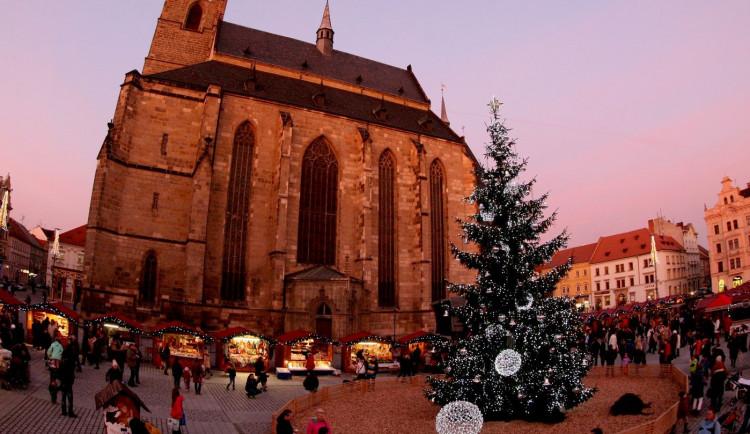 Vánoční strom už teď hledá město Plzeň, občané si mohou vybrat, jak bude ozdoben
