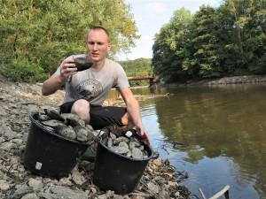 Z vypuštěné Borské přehrady stěhují biologové tisíce škeblí do nové lokality