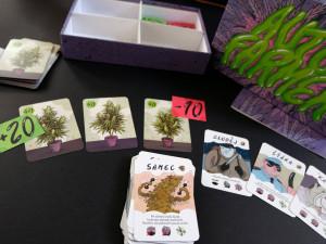 Marihuana do každé rodiny doma i v cizině? Karetní hra z ČR o pěstování konopí boří hranice