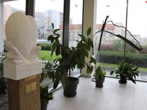 Sestřičky z FN Plzeň dostaly jako poděkování za práci bílé srdce z mramoru, jedna z nich se toho bohužel nedožila
