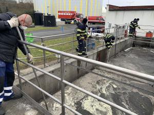 Další únik nebezpečných ropných látek do plzeňské kanalizace zachytila čistička v Jateční