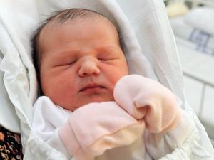 Loni se v Plzeňském kraji narodilo 5745 dětí, to je o 151 méně než předchozí rok
