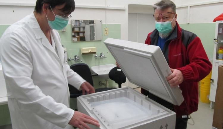 První dodávka vakcín proti koronaviru už odjela z Plzně do krajských nemocnic