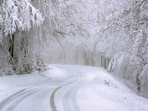 Připravte se v příštích dnech na pořádný mráz, sněžit bude i v Plzeňském kraji