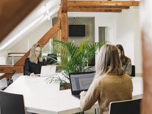 I v době pandemie zkouší podnikatelé štěstí, třeba v rámci sdílených kanceláří