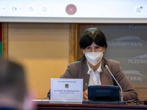 Vedení Plzeňského kraje má za sebou svůj první půlrok vlády, zásadně jej ovlivnila pandemie