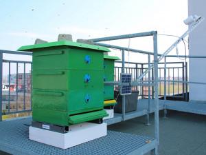 Na střeše plzeňské fakulty vnikla chytrá včelí laboratoř