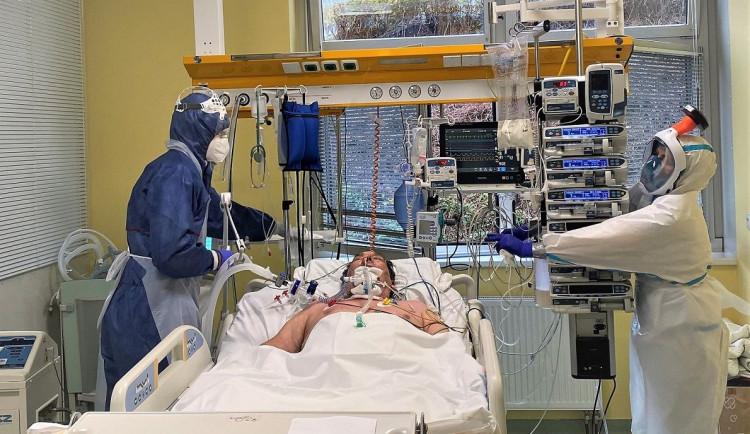 Počty nemocných s koronavirem v Plzeňském kraji sedmý týden klesají. V nemocnicích dál umírají desítky lidí