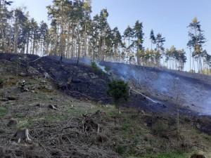 Nahlášené pálení se rychle vymklo kontrole, oheň zasáhl i část lesa