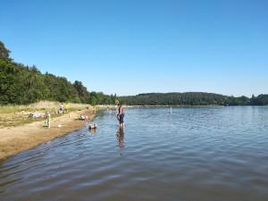 Velmi kvalitní vodu ke koupání mají přírodní a venkovní koupaliště v Plzeňském kraji