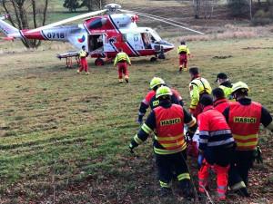 Při kácení dřeva v lese na Šumavě spadl strom na muže, na následky zranění zemřel v nemocnici