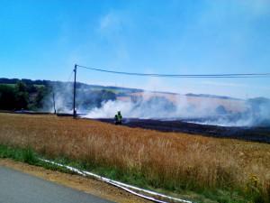 Požár lánu s obilím komplikoval silný vítr, hrozilo nebezpečí, že vzplane i nedaleký les