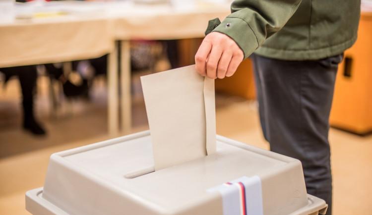 Do sněmovních voleb jde v Plzeňském kraji celkem 18 politických uskupení