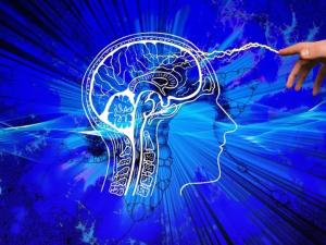 Vědci ze ZČU vyvinuli software, který usnadní lidem s poškozením mozku návrat k běžnému životu