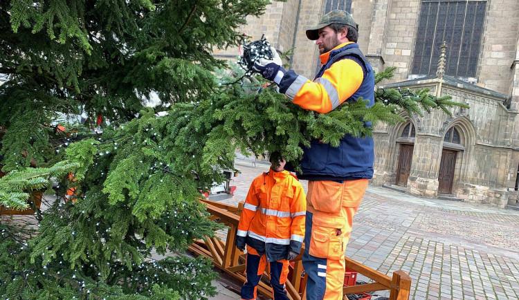 FOTOGALERIE: Zdobení vánočního stromu